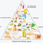 Почему важно вегетарианство